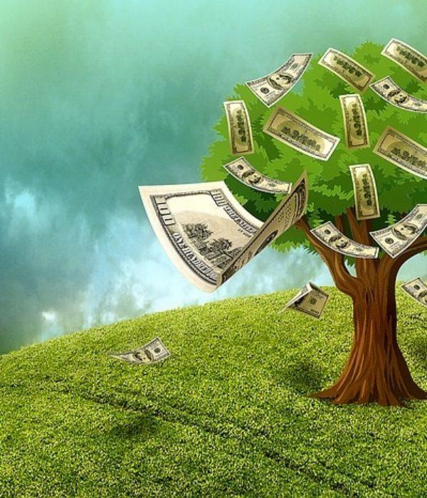 Dollar Tree Fanatic