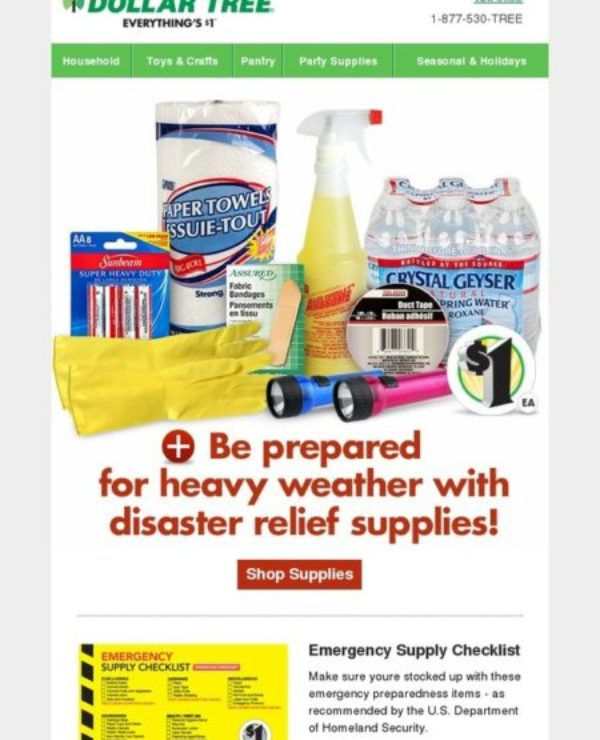 bulk emergency supply checklist