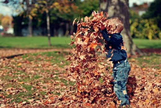Unusual Ways Kids Make Rural Money