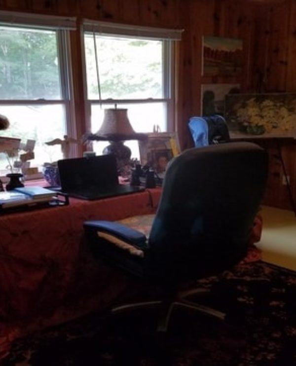 Rural Homestead Office Ideas