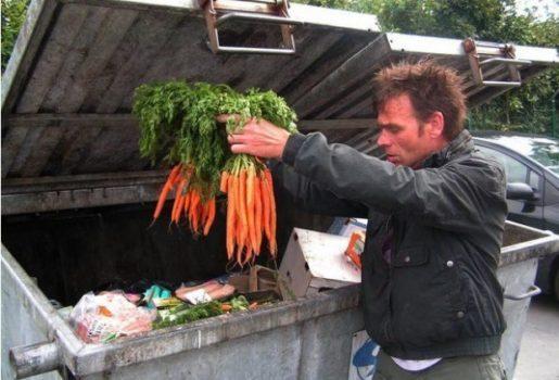 Dumpster Diving For Food