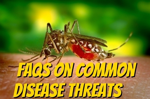 FAQs On Common Disease Threats