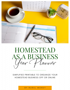 Fillable Homestead As A Business Year Planner