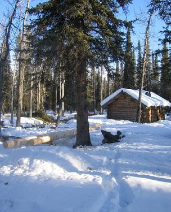 Get Free Land In Alaska To Build A Homestead