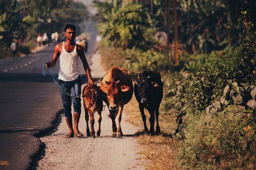 Make Money In Rural Villages