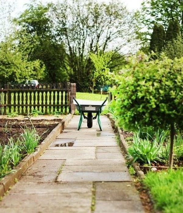 Make Money Renting Garden Plots