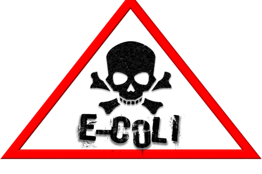 Preppers Food Safety FAQ