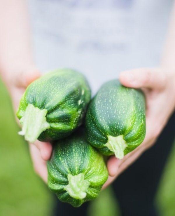 Small Space Edible Gardening