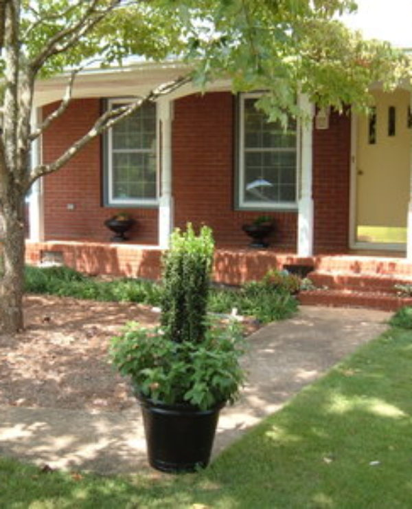 My USDA-RD Housing Success Story