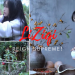 LiZiqi Chinese Rural Lifestyle Foodie